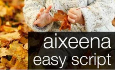 Aixeena SEO Easy Script