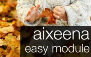 Easy Module