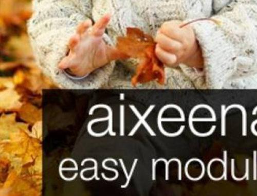 Aixeena SEO Easy Module
