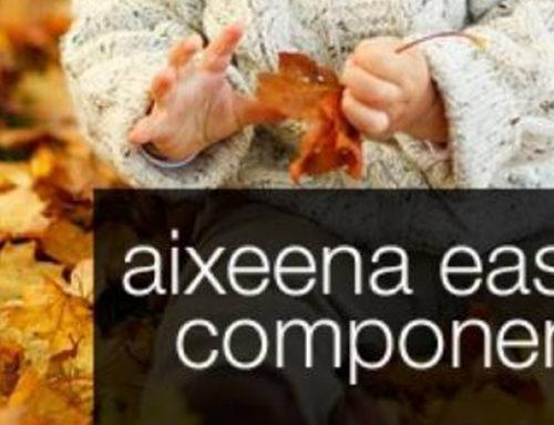 Aixeena SEO Easy Component