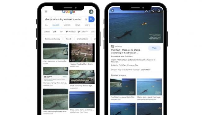 google etiqueta de verificación